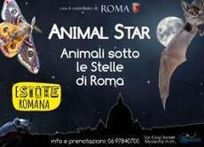 Animal Star – Escursione naturalistica Serale