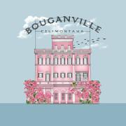 Bouganville Celimontana