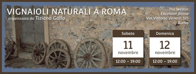 Vignaioli naturali a Roma